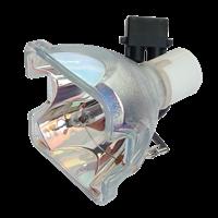 EVEREST EX-17020S Lampa bez modulu