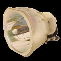 HP VP6121 Lampa bez modulu