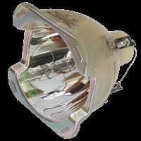 INFOCUS C350 Lampa bez modulu