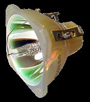 INFOCUS DP1000X Lampa bez modulu