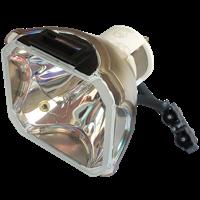INFOCUS LP850 Lampa bez modulu