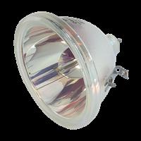 OSRAM P-VIP 100-120/1.3 P23 Lampa bez modulu
