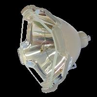 YAMAHA PJL-427 Lampa bez modulu